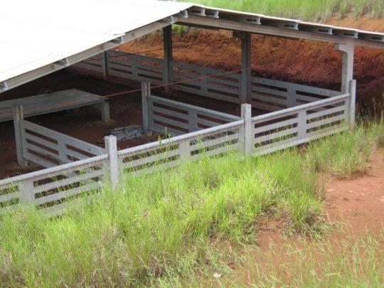Fazenda Sonhos de Gurí - Araquari (SC)_800x600
